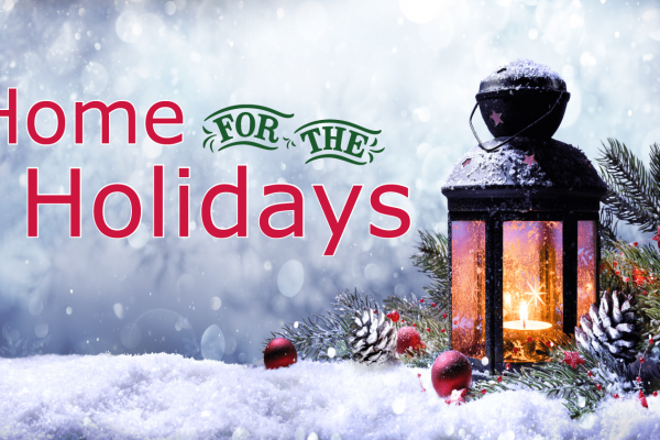 Home-for-the-Holidays-with-Hospice-01